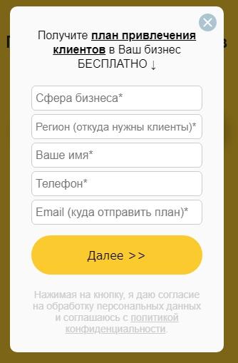Аудит сайта – пример длинной формы заявки