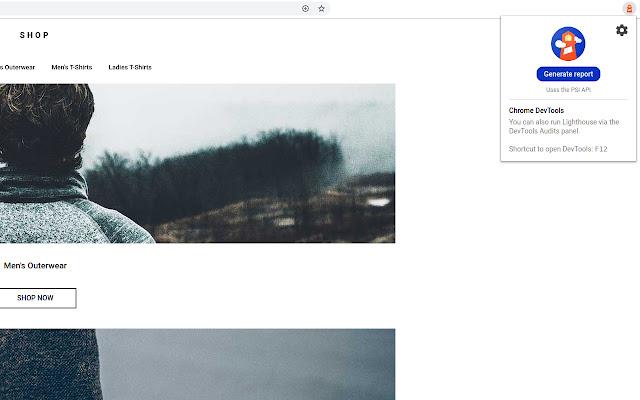 Расширения для браузеров – Lighthouse