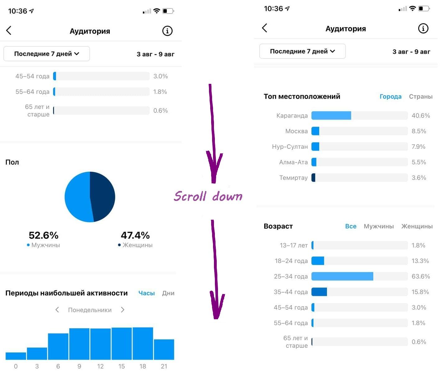 Статистика аудитории в Инстаграме