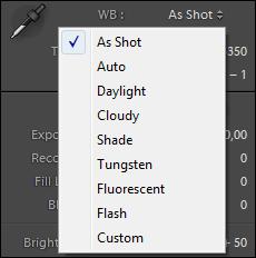 Обработка фото в Лайтрум: панель WB