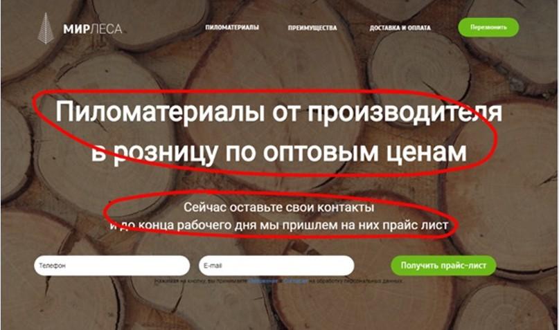 Реклама на поиске Яндекса – пример подменяемых элементов 2